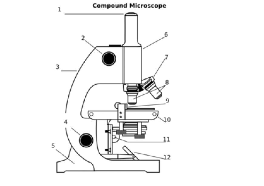 Bagian  - bagian mikroskop biologi
