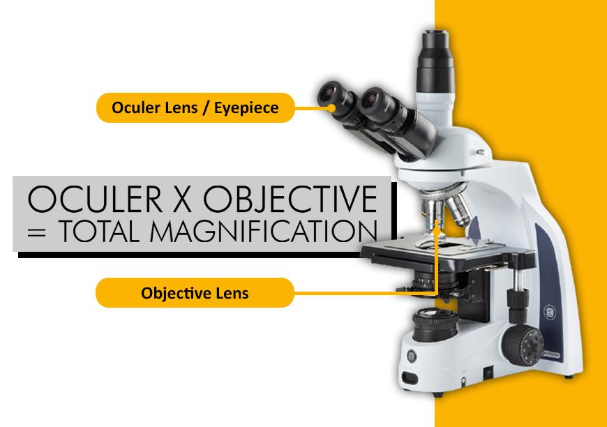 Perbesaran Lensa Mikroskop (Empty magnification) dan Numerical Aperture pada Lensa Mikroskop, Apa Arti dan Fungsinya ?